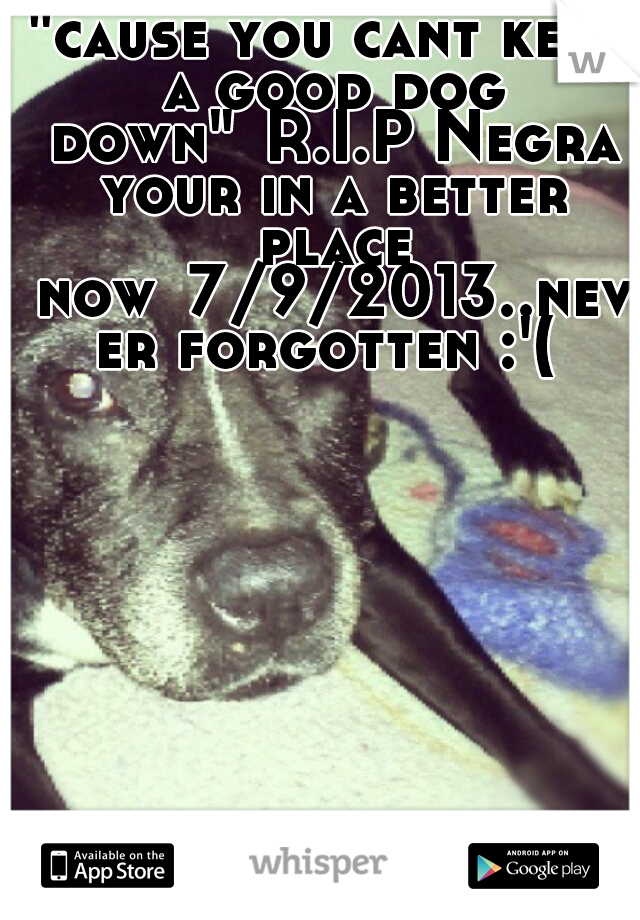 """cause you cant keep a good dog down"" R.I.P Negra your in a better place now 7/9/2013..never forgotten :'("