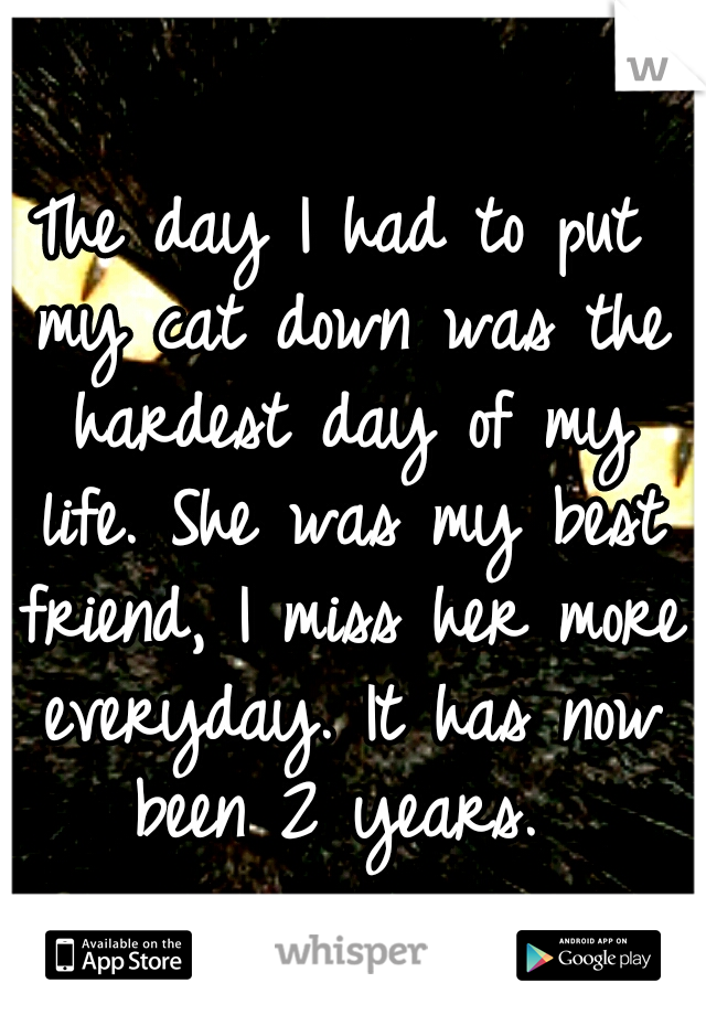 The day I had to put my cat down was the hardest day of my life. She was my best friend, I miss her more everyday. It has now been 2 years.