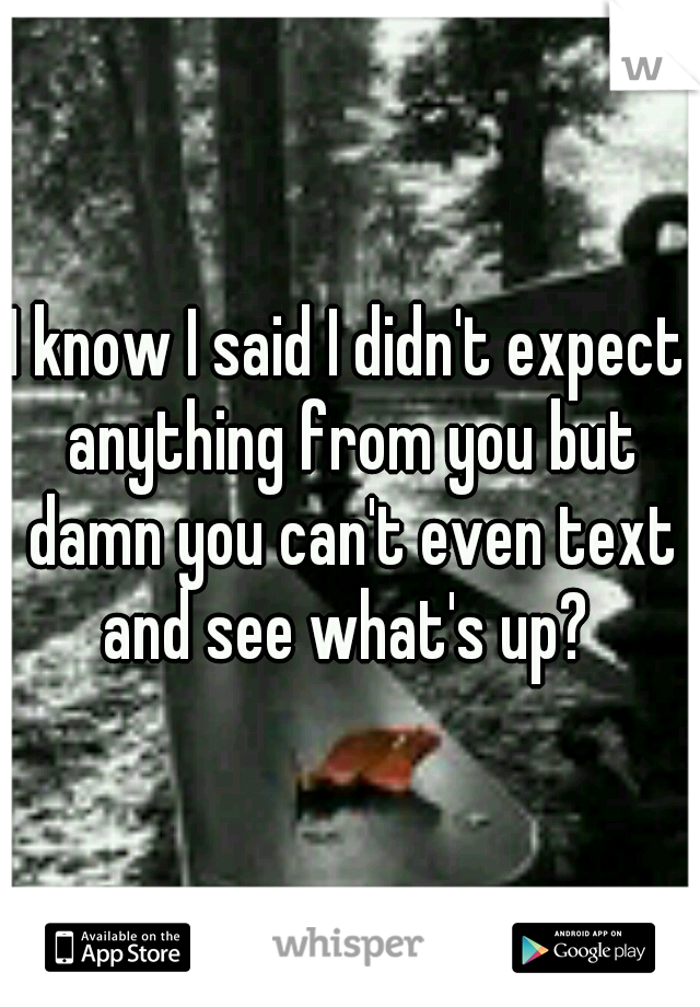 I know I said I didn't expect anything from you but damn you can't even text and see what's up?