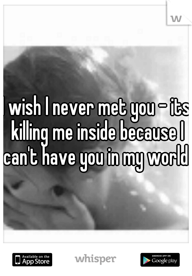 I wish I never met you - its killing me inside because I can't have you in my world.
