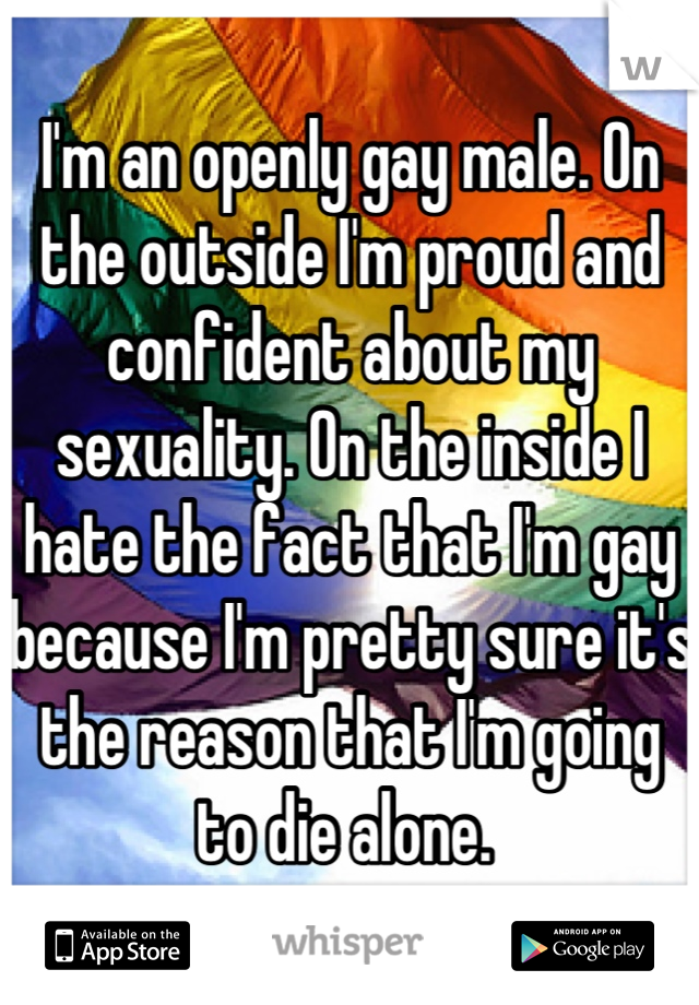 I'm an openly gay male. On the outside I'm proud and confident about my sexuality. On the inside I hate the fact that I'm gay because I'm pretty sure it's the reason that I'm going to die alone.