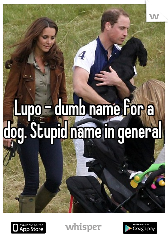Lupo - dumb name for a dog. Stupid name in general