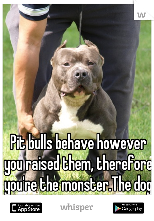 Pit bulls behave however you raised them, therefore you're the monster.The dog is not.