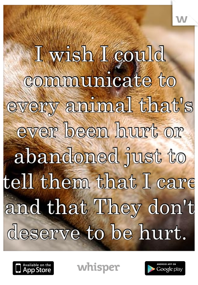 I wish I could communicate to every animal that's ever been hurt or abandoned just to tell them that I care and that They don't deserve to be hurt.