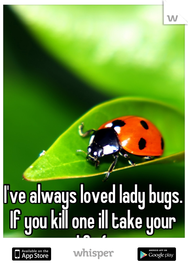 I've always loved lady bugs. If you kill one ill take your life (: