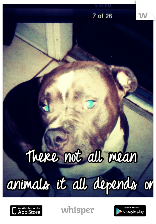 There not all mean animals it all depends on the owner