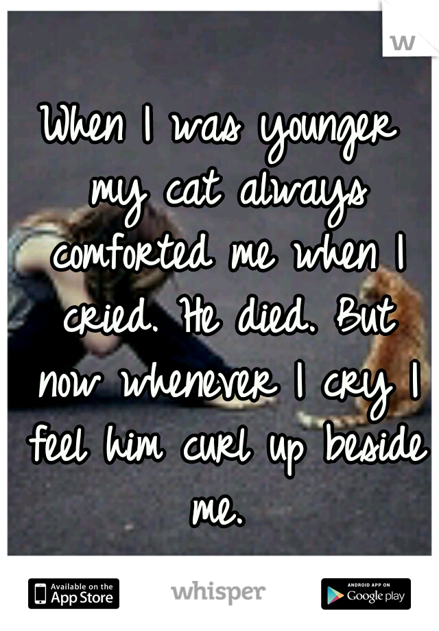 When I was younger my cat always comforted me when I cried. He died. But now whenever I cry I feel him curl up beside me.