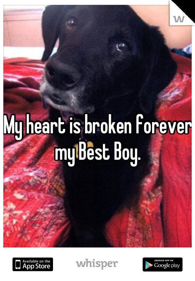 My heart is broken forever my Best Boy.