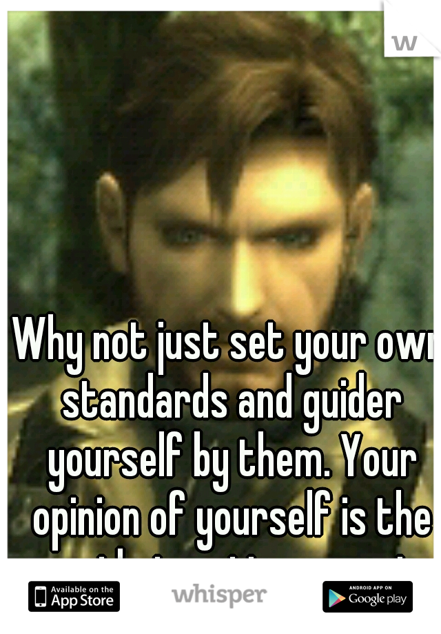Why not just set your own standards and guider yourself by them. Your opinion of yourself is the one that matters most.