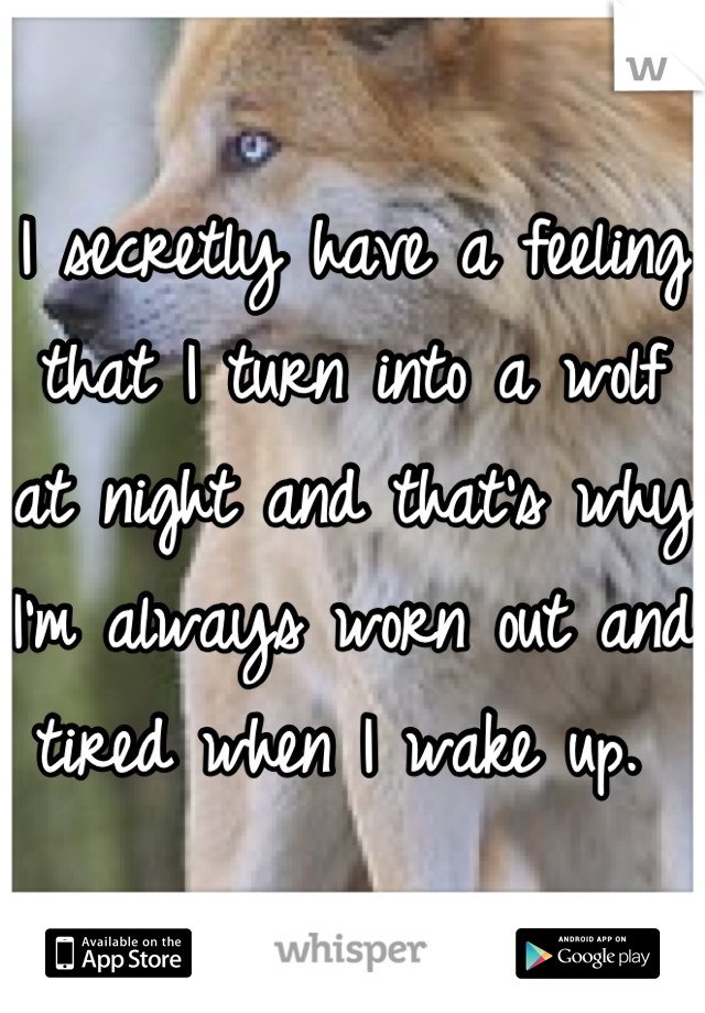 I secretly have a feeling that I turn into a wolf at night and that's why I'm always worn out and tired when I wake up.