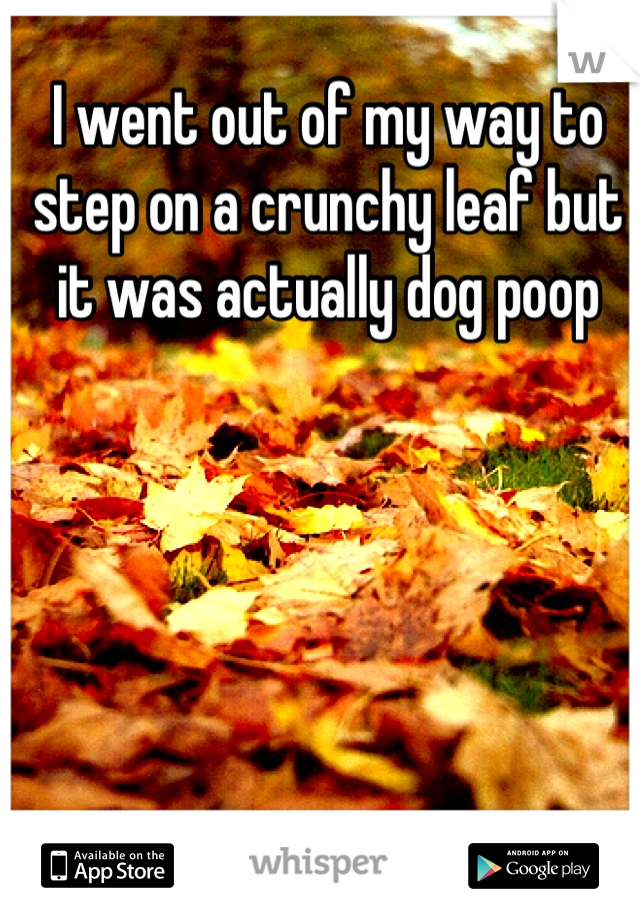 I went out of my way to step on a crunchy leaf but it was actually dog poop