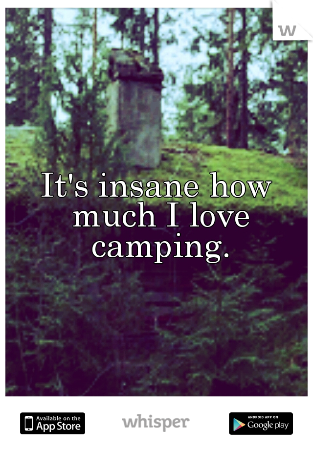 It's insane how much I love camping.