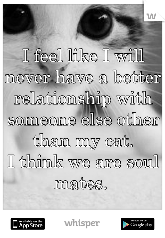 I feel like I will never have a better relationship with someone else other than my cat.  I think we are soul mates.