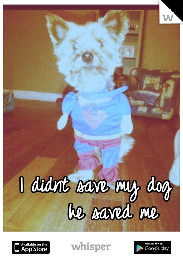 I didnt save my dog      he saved me