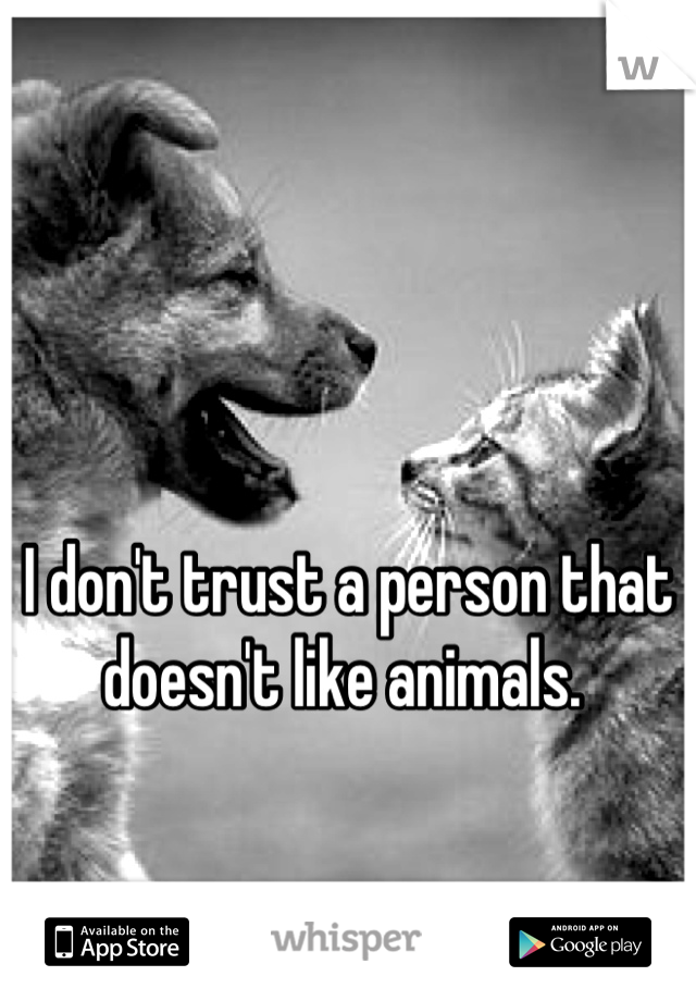 I don't trust a person that doesn't like animals.