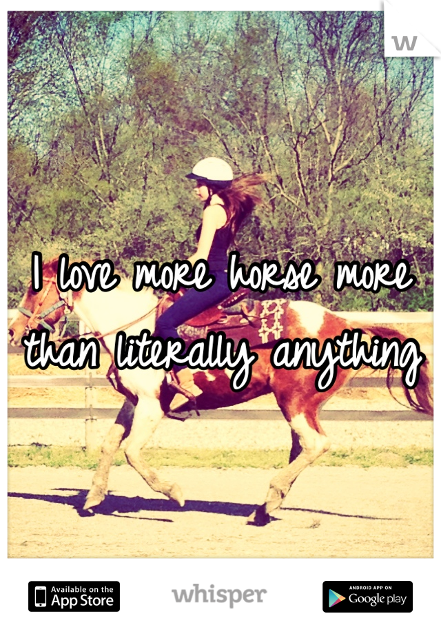 I love more horse more than literally anything