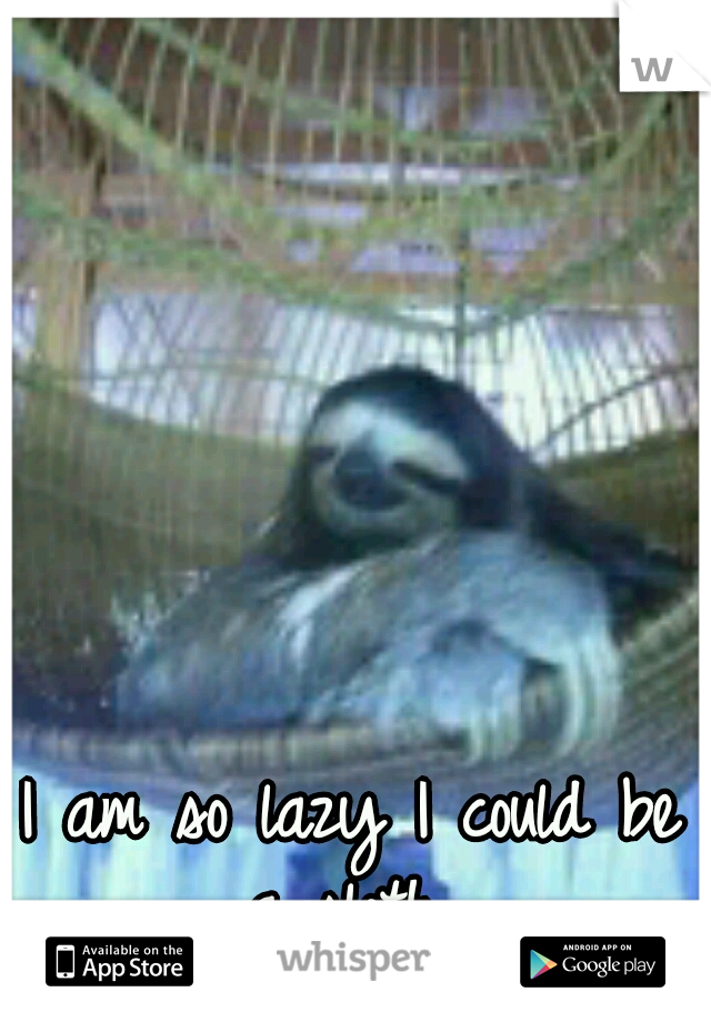 I am so lazy I could be a sloth.