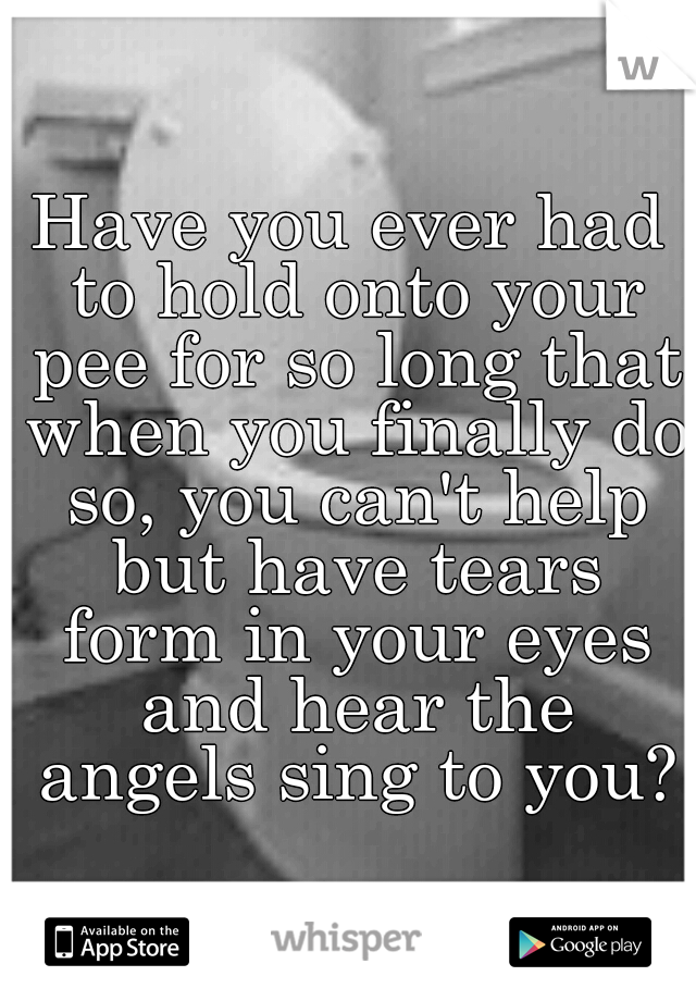 Have you ever had to hold onto your pee for so long that when you finally do so, you can't help but have tears form in your eyes and hear the angels sing to you?