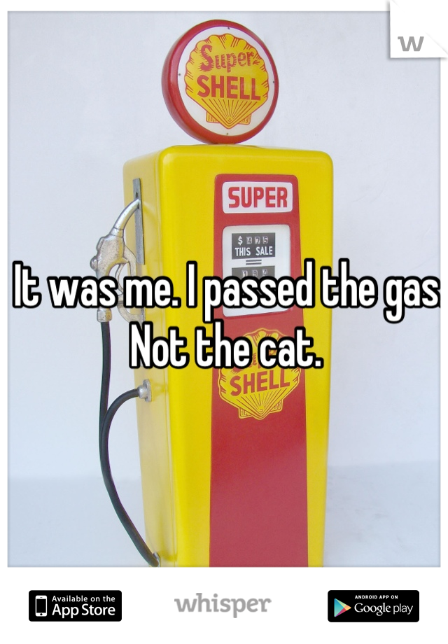 It was me. I passed the gas. Not the cat.