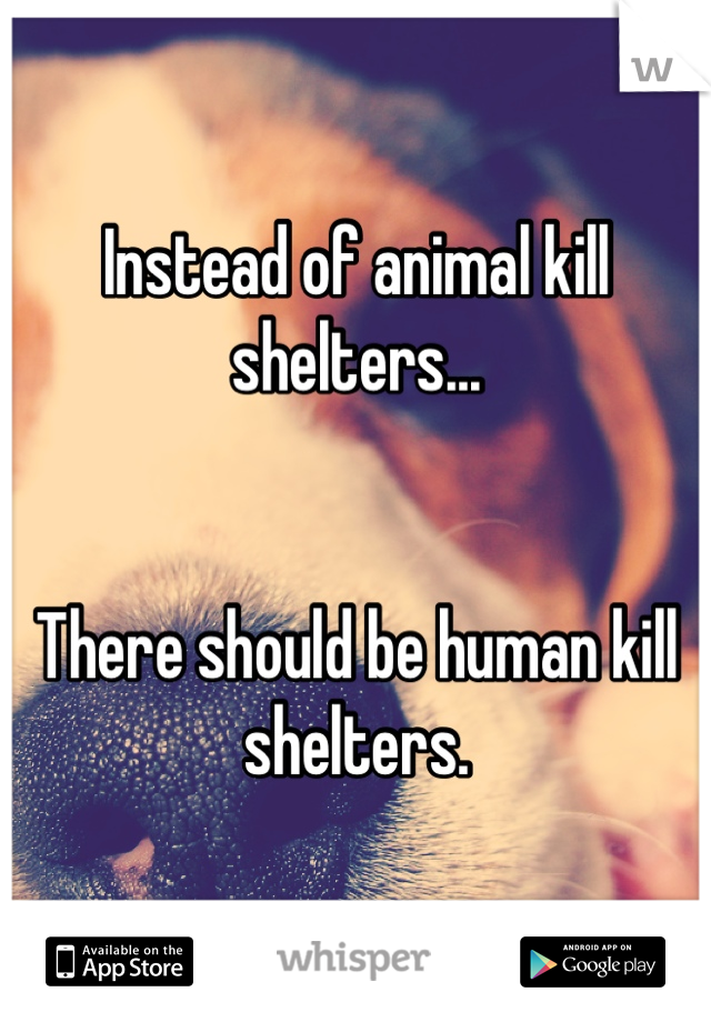 Instead of animal kill shelters...   There should be human kill shelters.