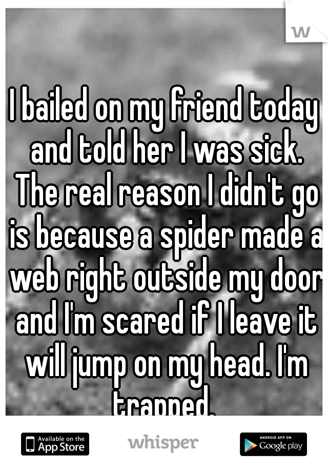 I bailed on my friend today and told her I was sick. The real reason I didn't go is because a spider made a web right outside my door and I'm scared if I leave it will jump on my head. I'm trapped.