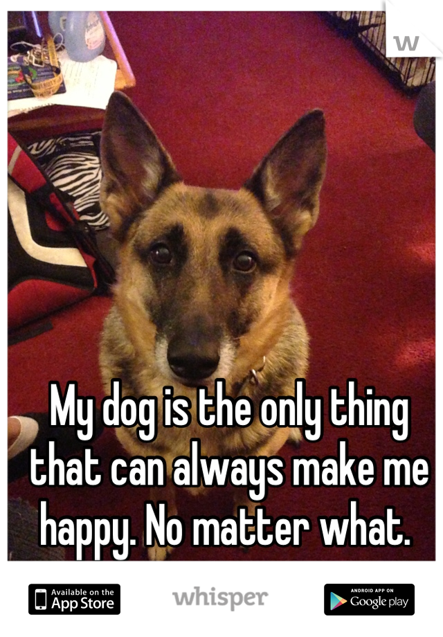 My dog is the only thing that can always make me happy. No matter what.