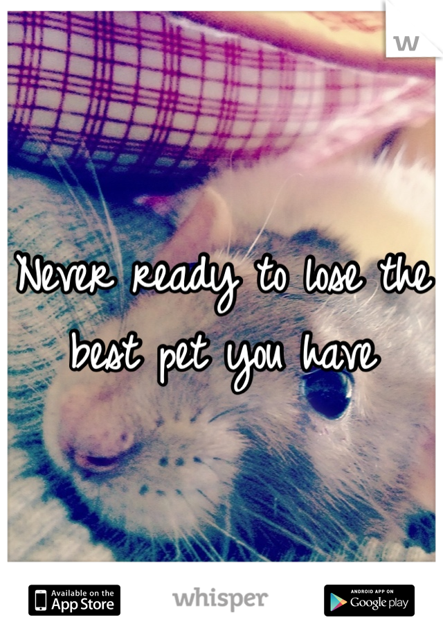 Never ready to lose the best pet you have