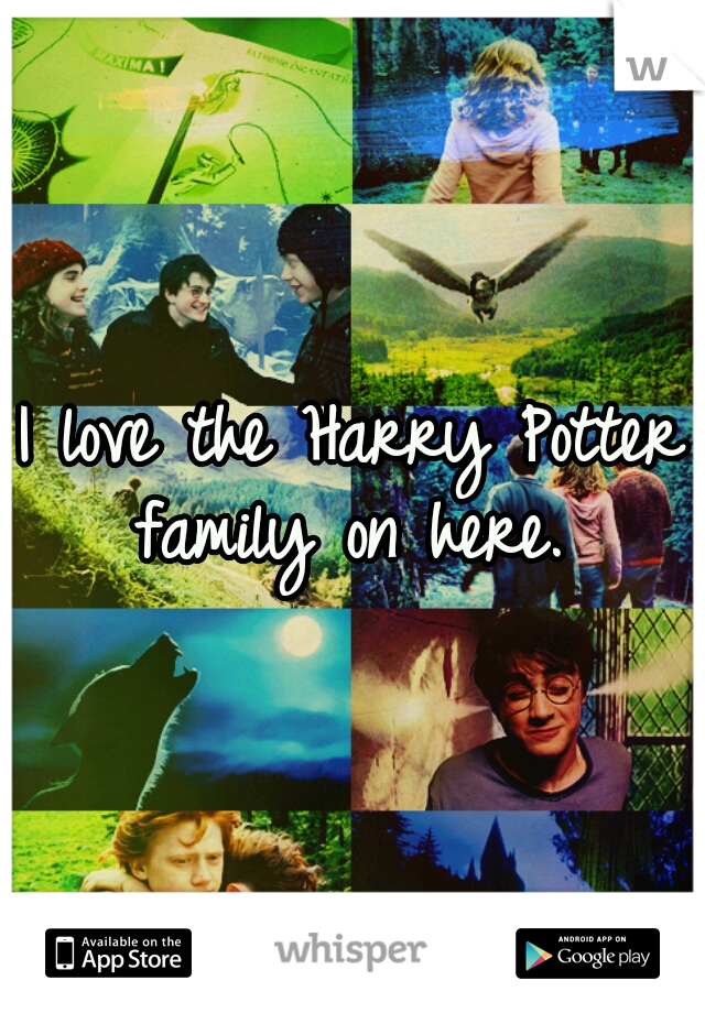 I love the Harry Potter family on here.