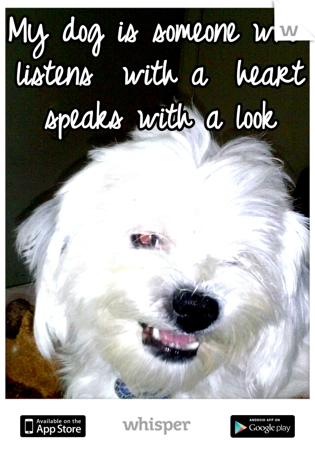 My dog is someone who listens  with a  heart speaks with a look