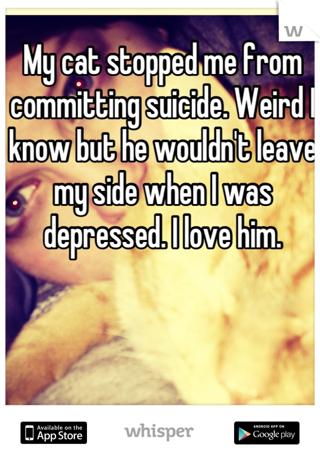 My cat stopped me from committing suicide. Weird I know but he wouldn't leave my side when I was depressed. I love him.