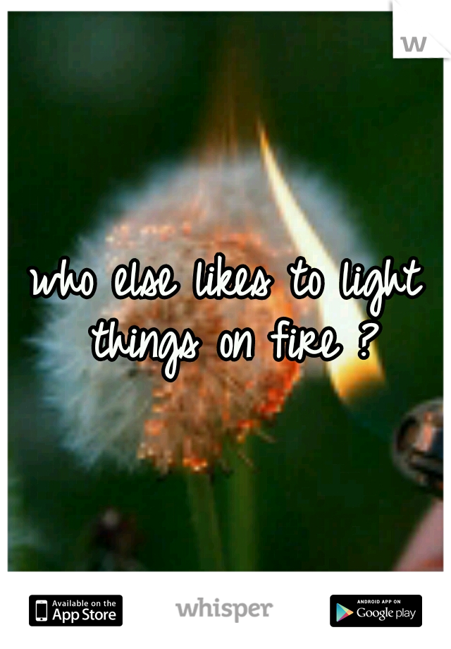 who else likes to light things on fire ?
