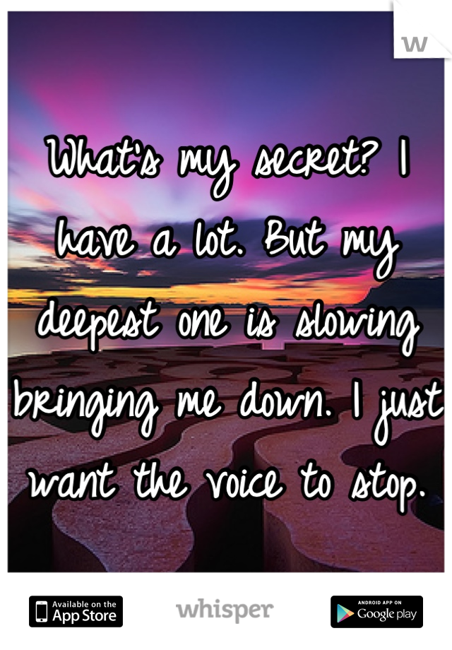 What's my secret? I have a lot. But my deepest one is slowing bringing me down. I just want the voice to stop.