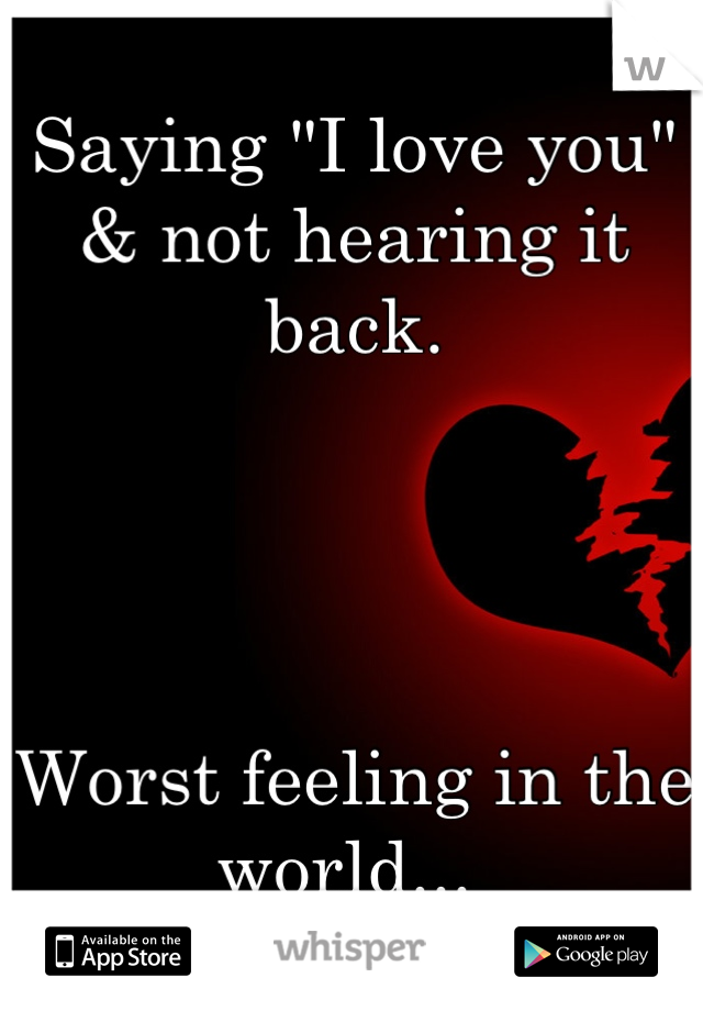"Saying ""I love you"" & not hearing it back.      Worst feeling in the world..."