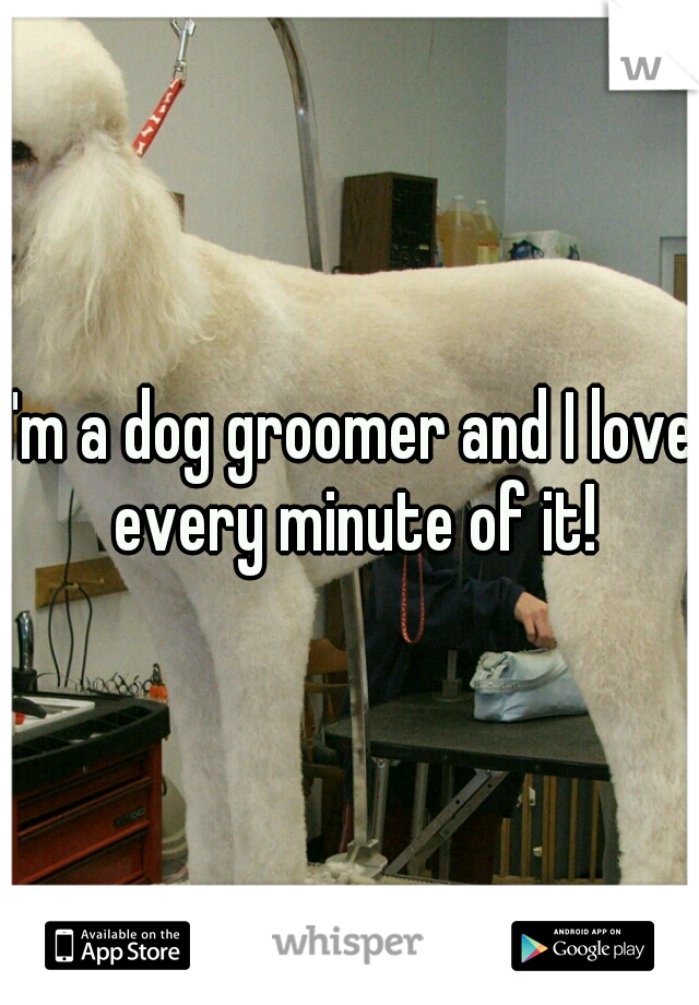 I'm a dog groomer and I love every minute of it!