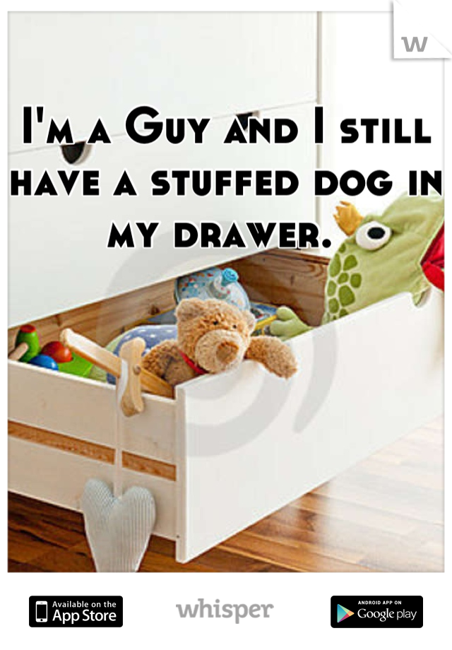 I'm a Guy and I still have a stuffed dog in my drawer.
