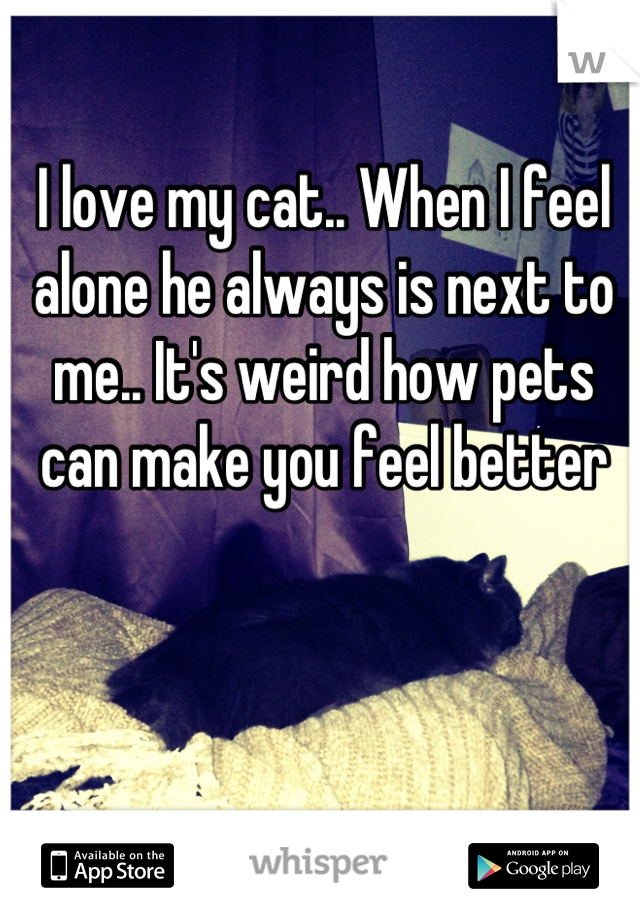 I love my cat.. When I feel alone he always is next to me.. It's weird how pets can make you feel better
