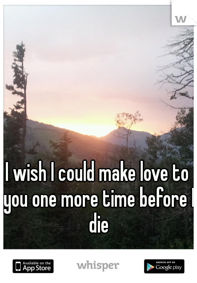 I wish I could make love to you one more time before I die