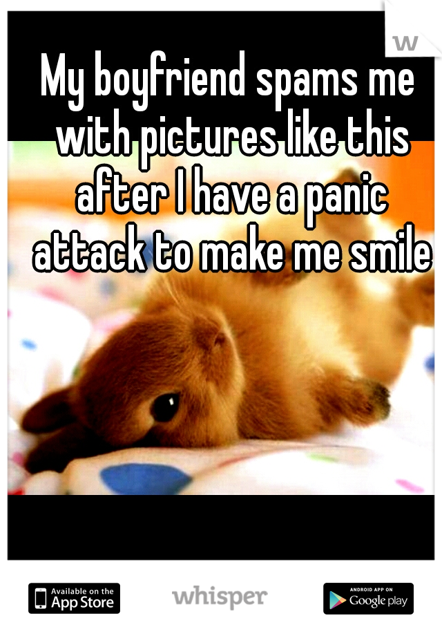 My boyfriend spams me with pictures like this after I have a panic attack to make me smile