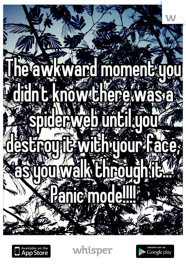 The awkward moment you didn't know there was a spiderweb until you destroy it with your face, as you walk through it... Panic mode!!!!