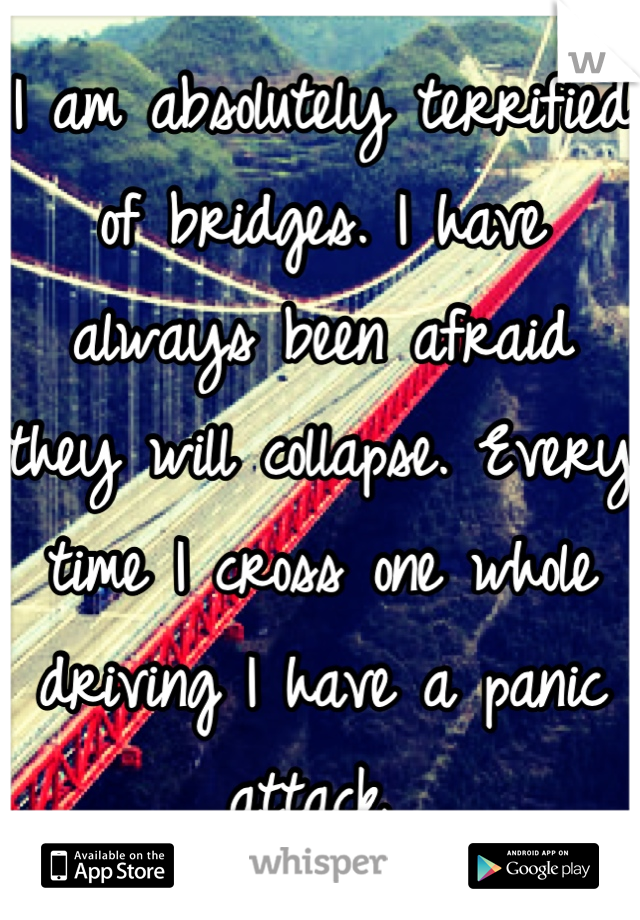 I am absolutely terrified of bridges. I have always been afraid they will collapse. Every time I cross one whole driving I have a panic attack