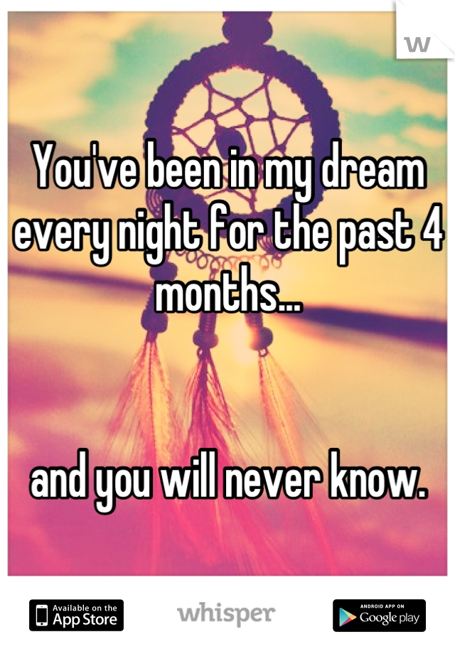 You've been in my dream every night for the past 4 months...   and you will never know.