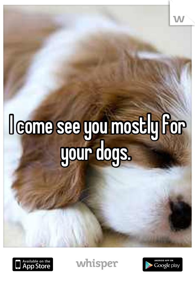 I come see you mostly for your dogs.