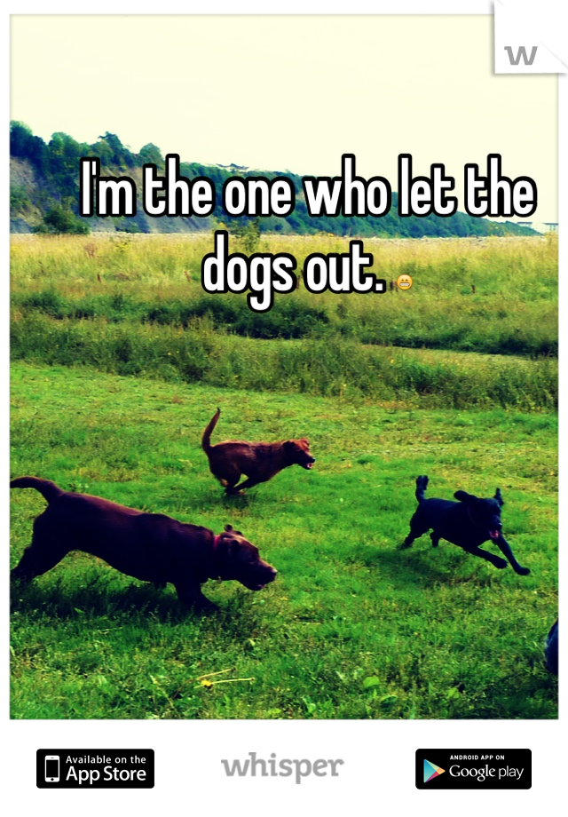 I'm the one who let the dogs out. 😁