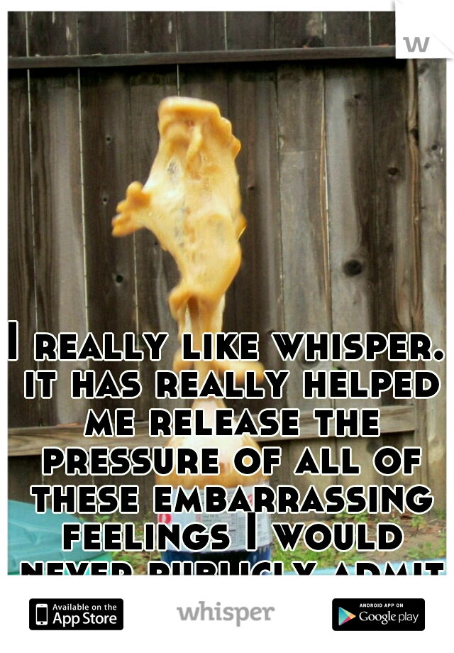 I really like whisper. it has really helped me release the pressure of all of these embarrassing feelings I would never publicly admit to society