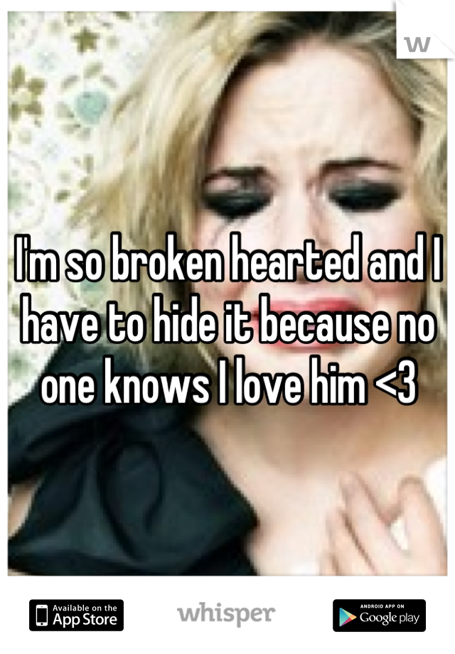 I'm so broken hearted and I have to hide it because no one knows I love him <3