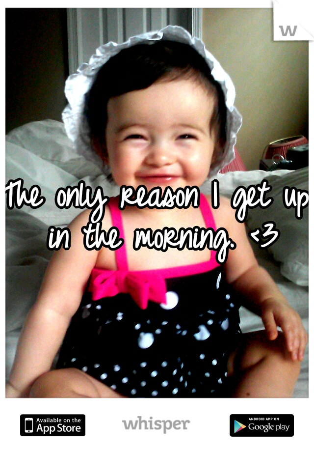 The only reason I get up in the morning. <3