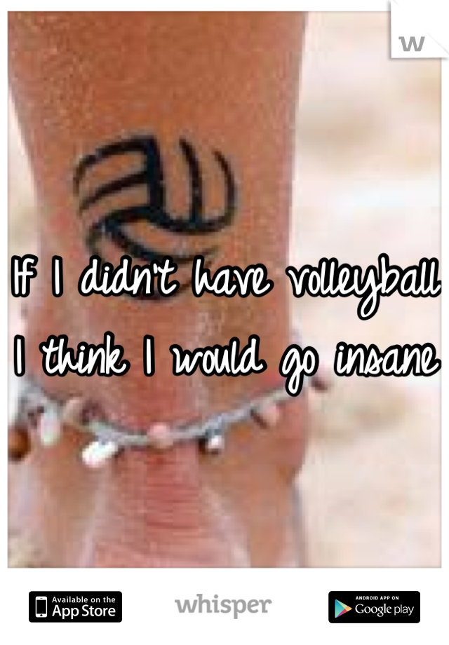 If I didn't have volleyball I think I would go insane