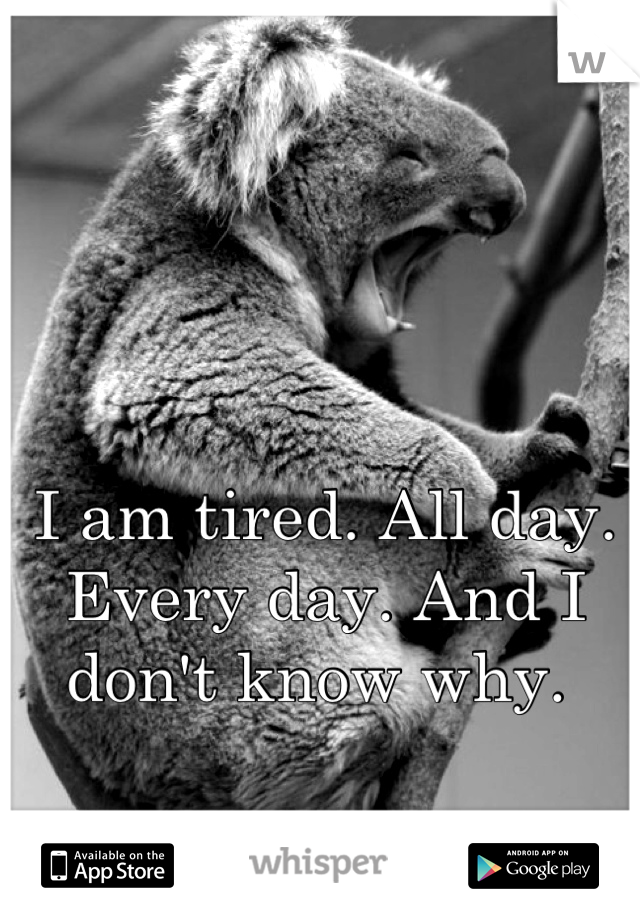 I am tired. All day. Every day. And I don't know why.