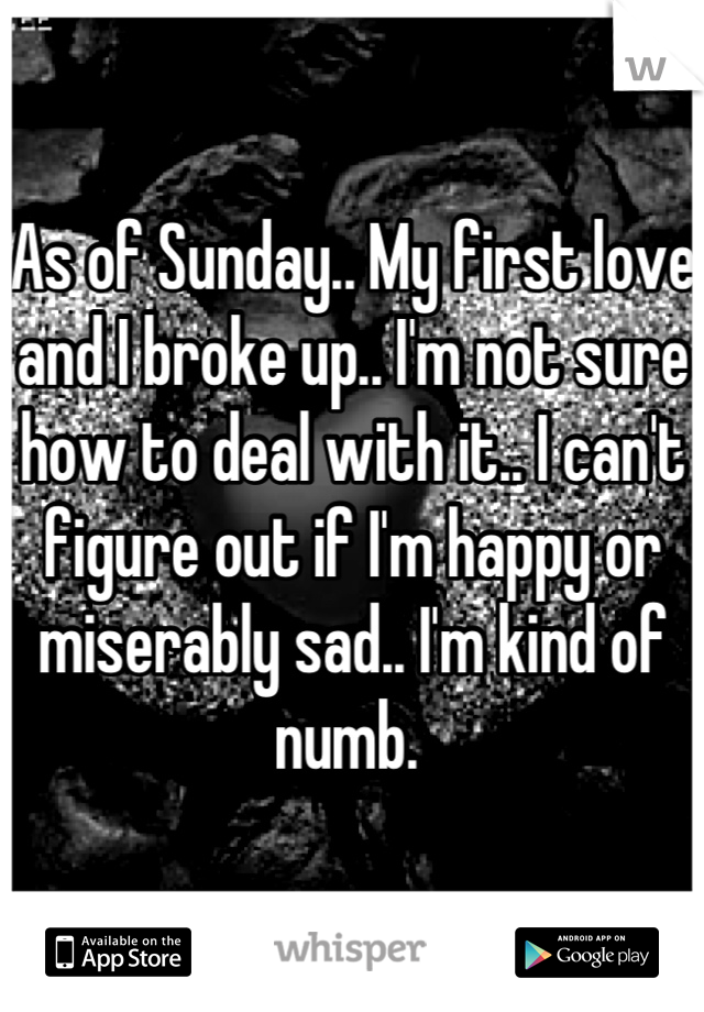 As of Sunday.. My first love and I broke up.. I'm not sure how to deal with it.. I can't figure out if I'm happy or miserably sad.. I'm kind of numb.