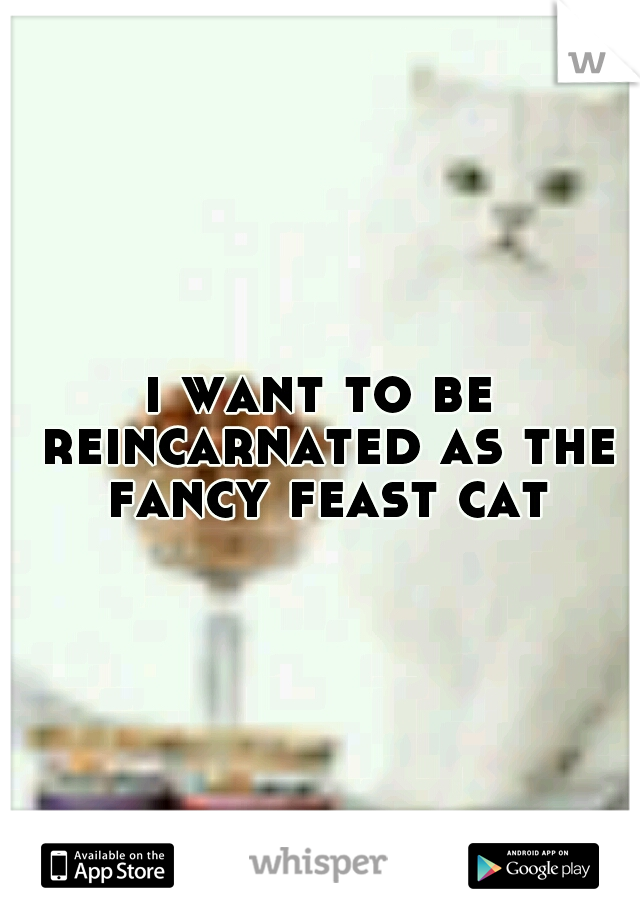 i want to be reincarnated as the fancy feast cat